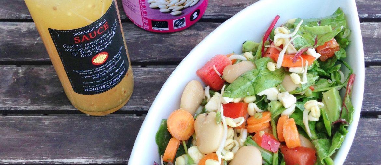 Salat til grill med bønner, gulerødder, peberfrugt, feta og en god nordisk dressing
