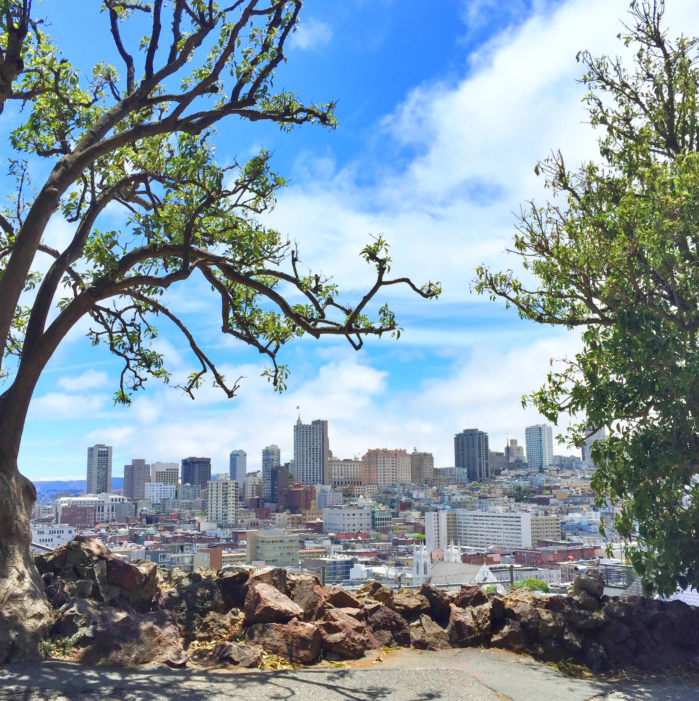 San Fransisco, Californien. Guide til spisesteder og oplevelser