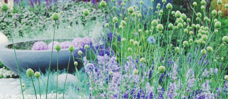 CPH Garden 2017