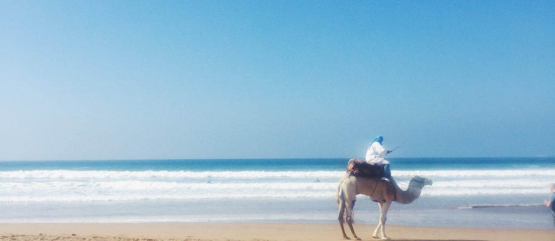 Shop og spis lokalt i Marokko!