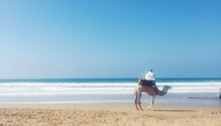 Det skal du se, shoppe og spise i Marokko!
