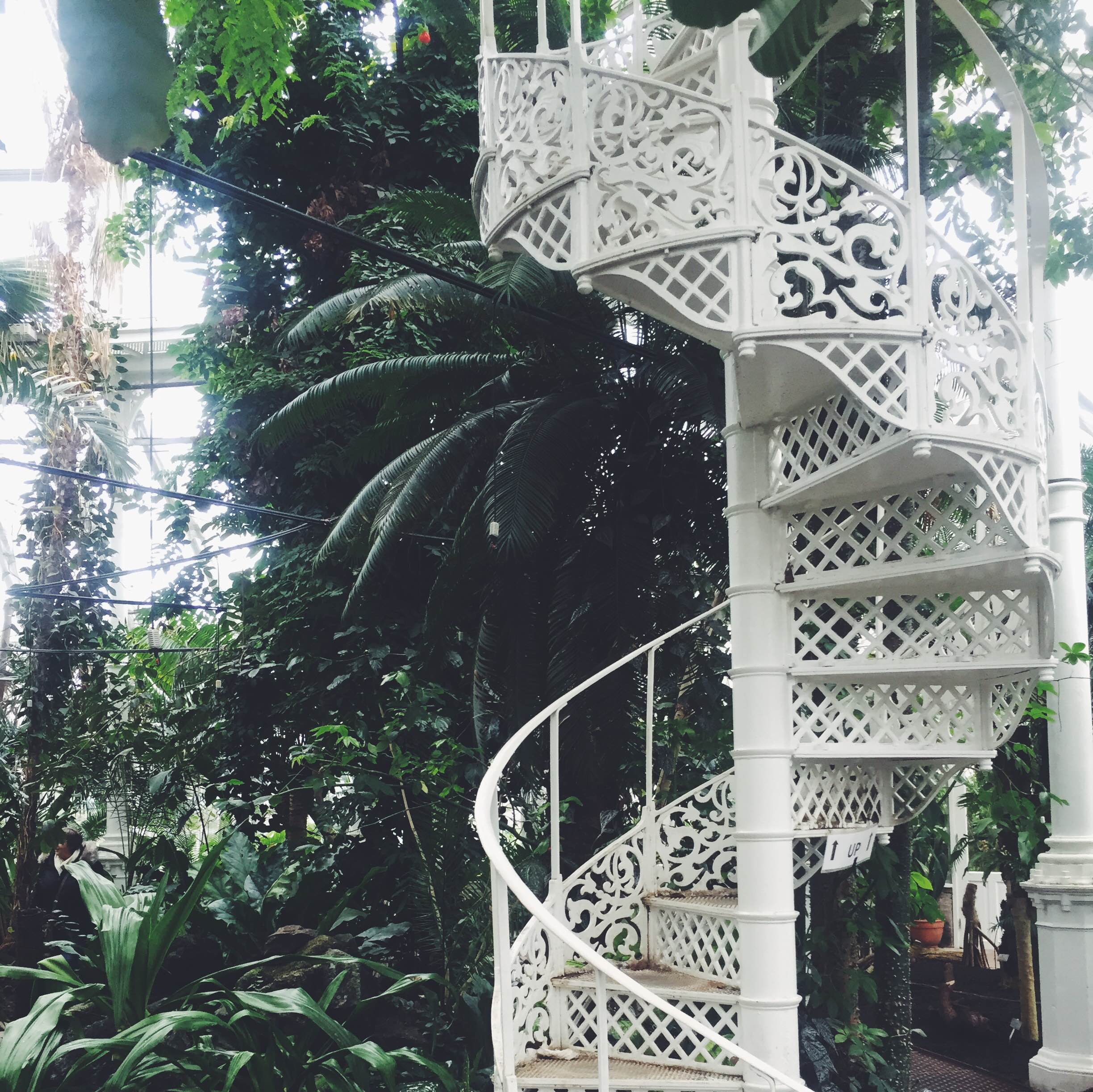Botanical garden and the popular white staircase, Copenhagen