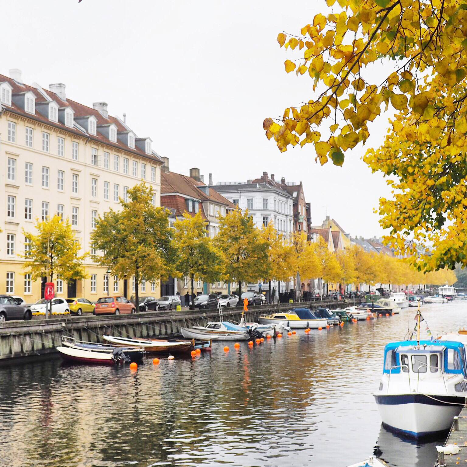 Autumn in Christianshavn. Yellow leaves and lots of boats. Christianshavn in Copenhagen