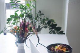 3 planter der IKKE skal vandes og passes ;)