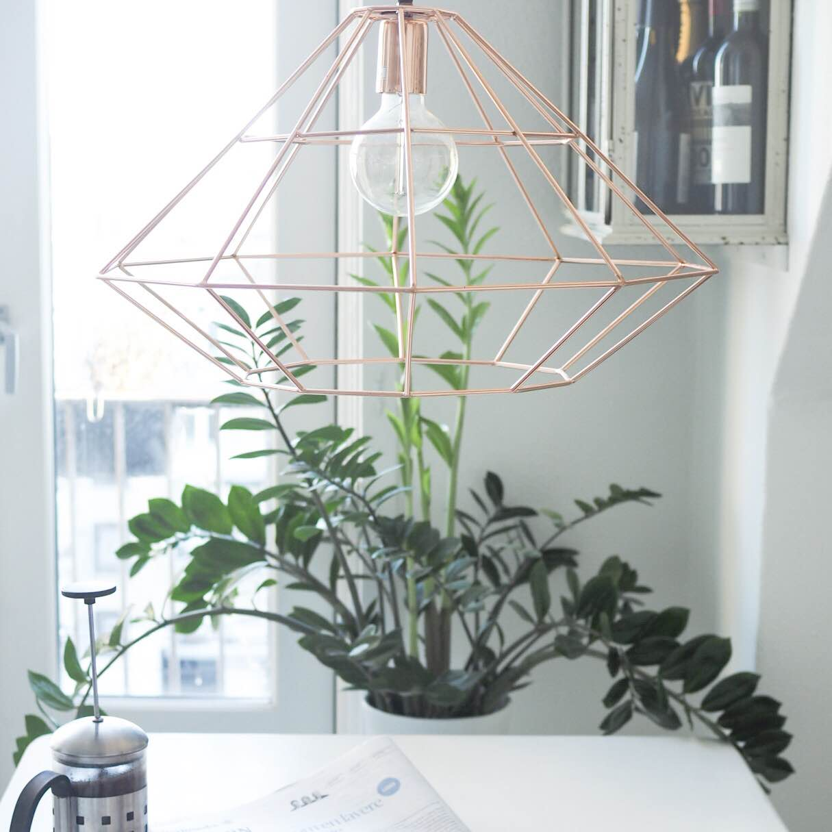 Stueplanter der holder sig længe