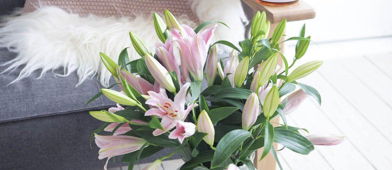 Sofa, avis, kaffe, Royal Copenhagen, lyserøde liljer, dansk hygge, dansk design, Skandinavisk livsstil, bæredygtig livsstil