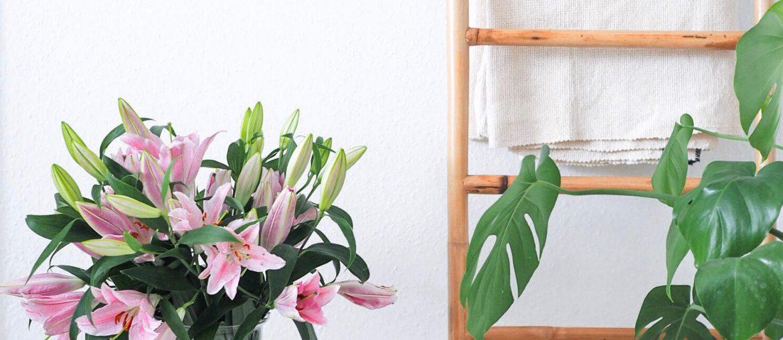 Livet uden fjernsyn. Lyserøde liljer, stige i bambus. Indretningstips