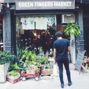 Green Fingers Market i New York