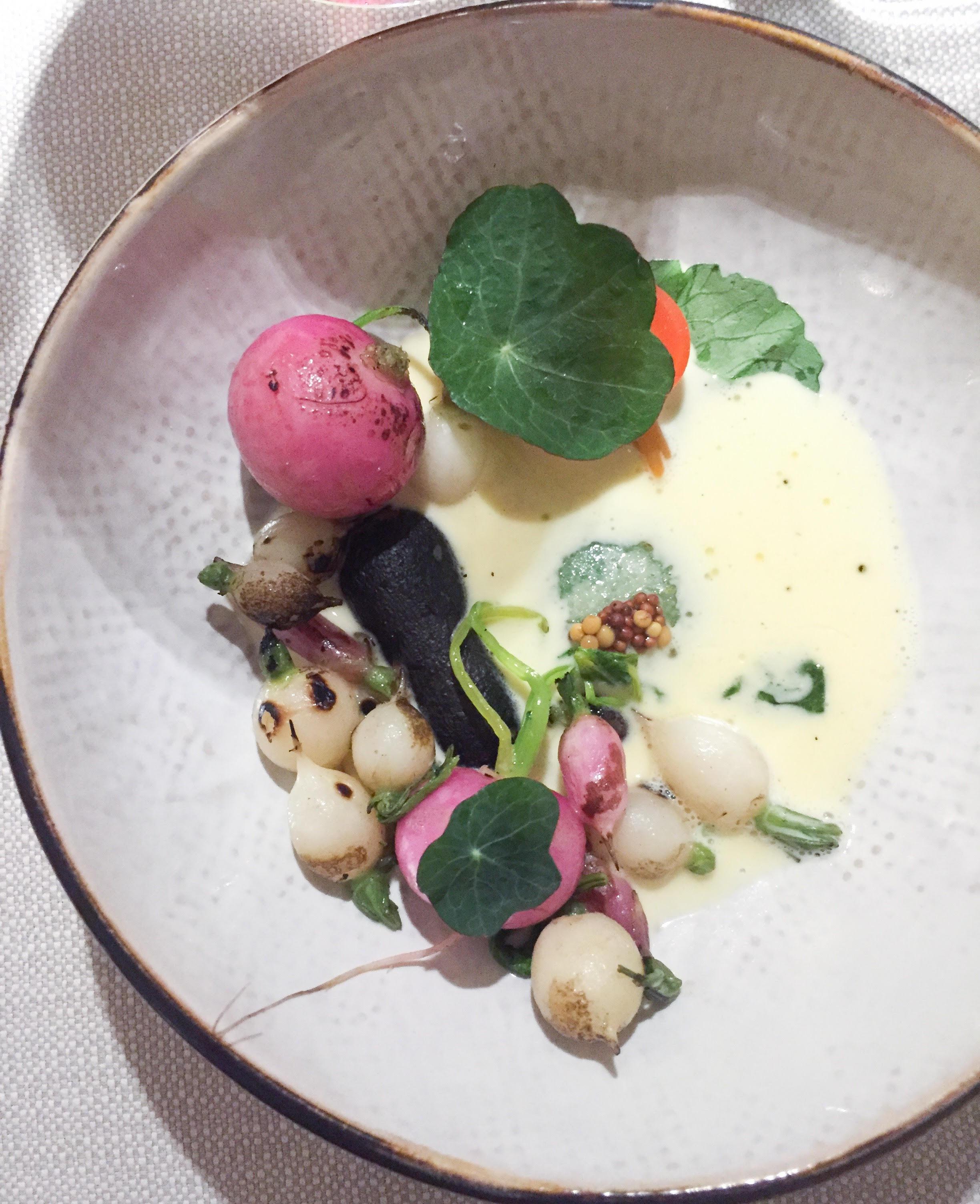 Helt vegetarisk gourmetrestaurant i København. Radiser på VEVE Østerbro