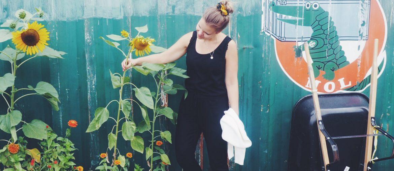 Solsikker og urban gardening i New York. Store høje solsikker, trillebører, havearbejde og CopenhagenByMe