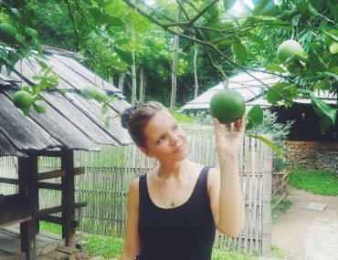 grape og frugter i Vietnam