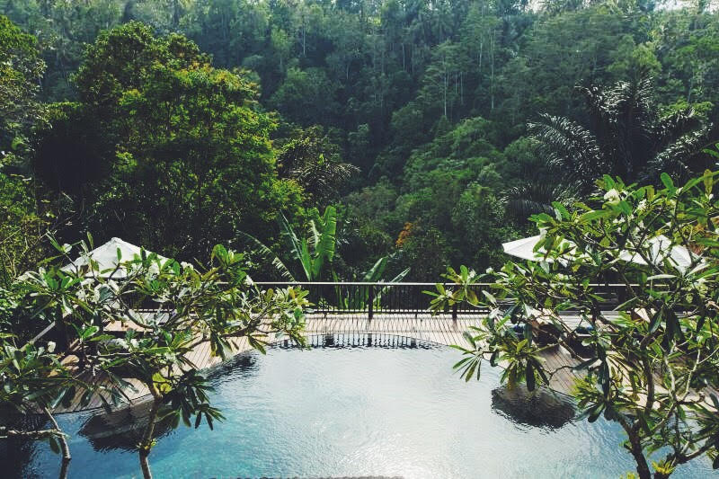 jungl resort bali yaneeda.com