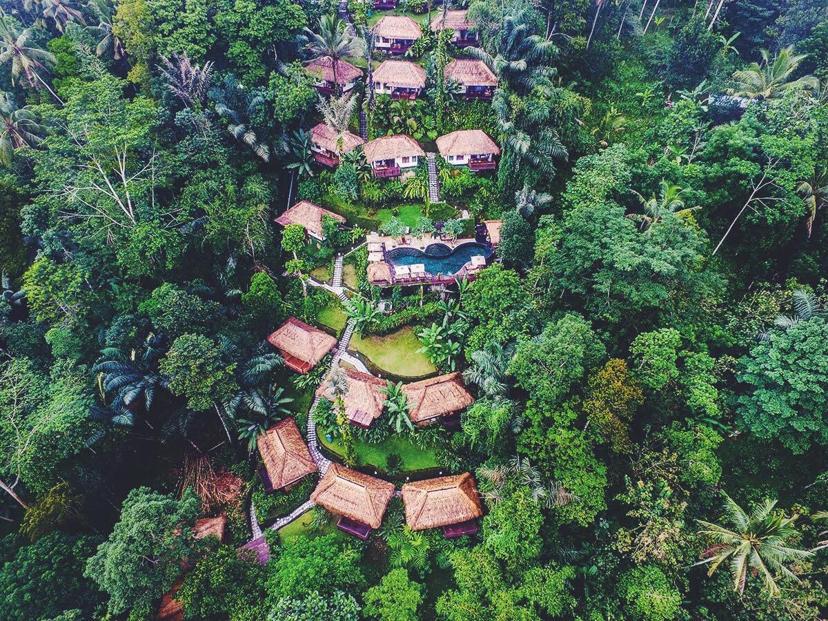 ubud jungle resort på Bali. Natur, yoga og sund og vegetarisk mad