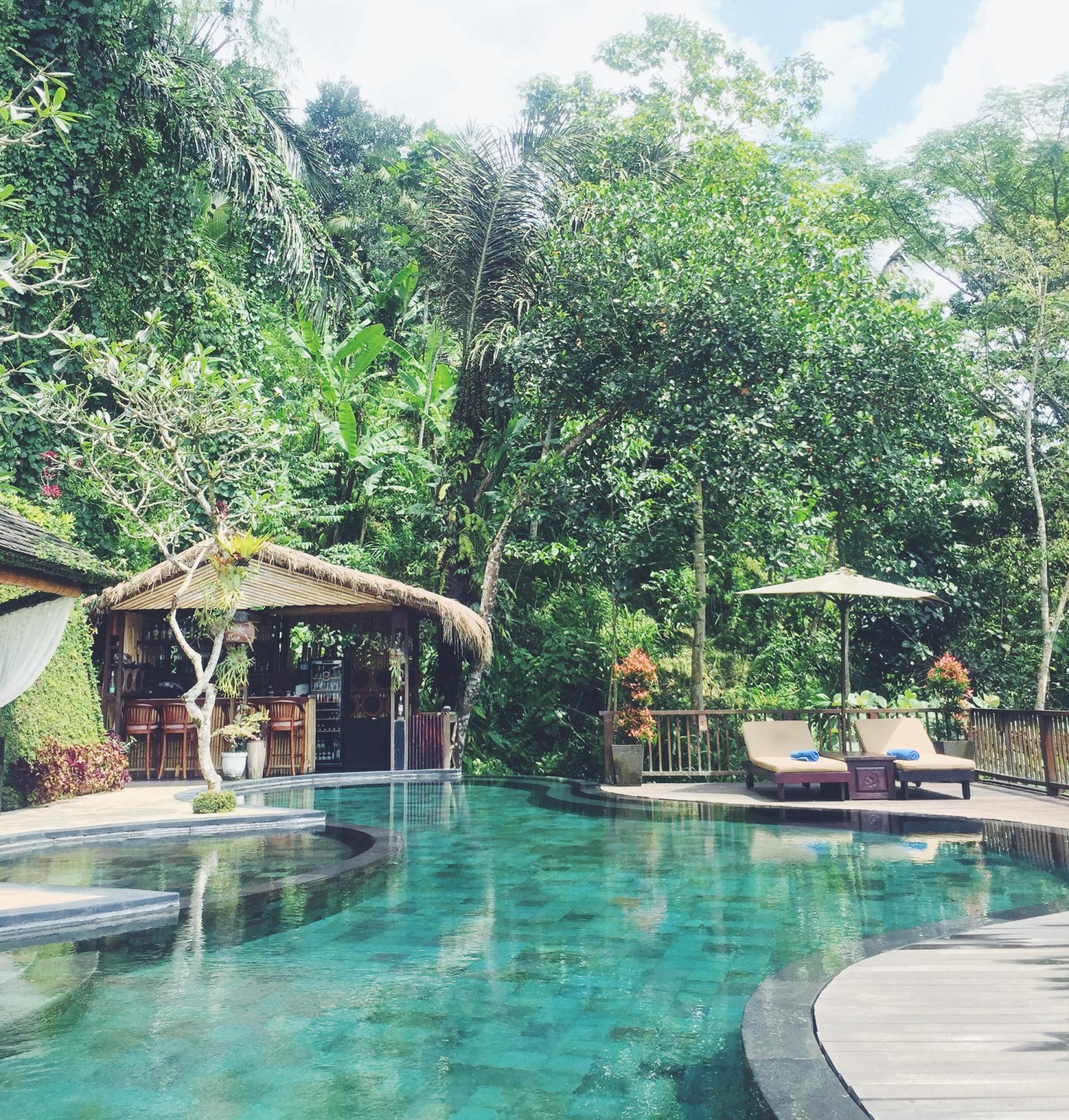 bedste hotel i junglen ubud bali