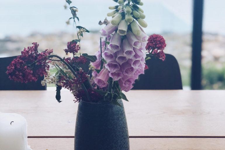 instagram udfordring: hjælp til Instagram. Arbejdet på Nordlandet på Bornholm
