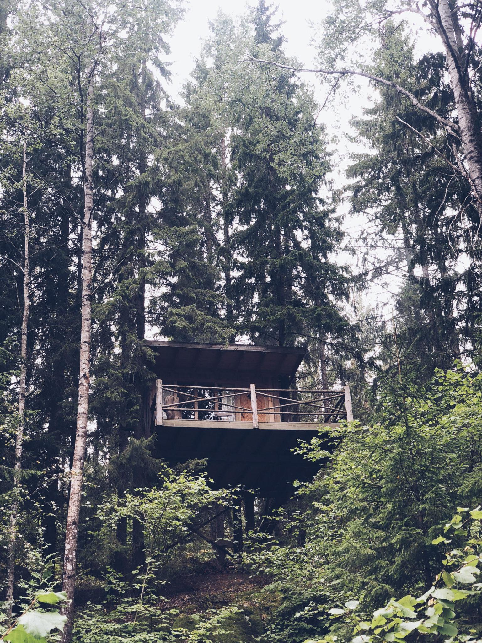 hytte-i-traerne-traetop