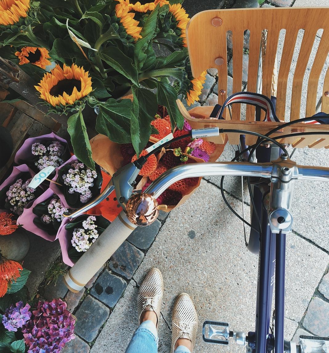 recycle - cykel af nespresso-kapsler