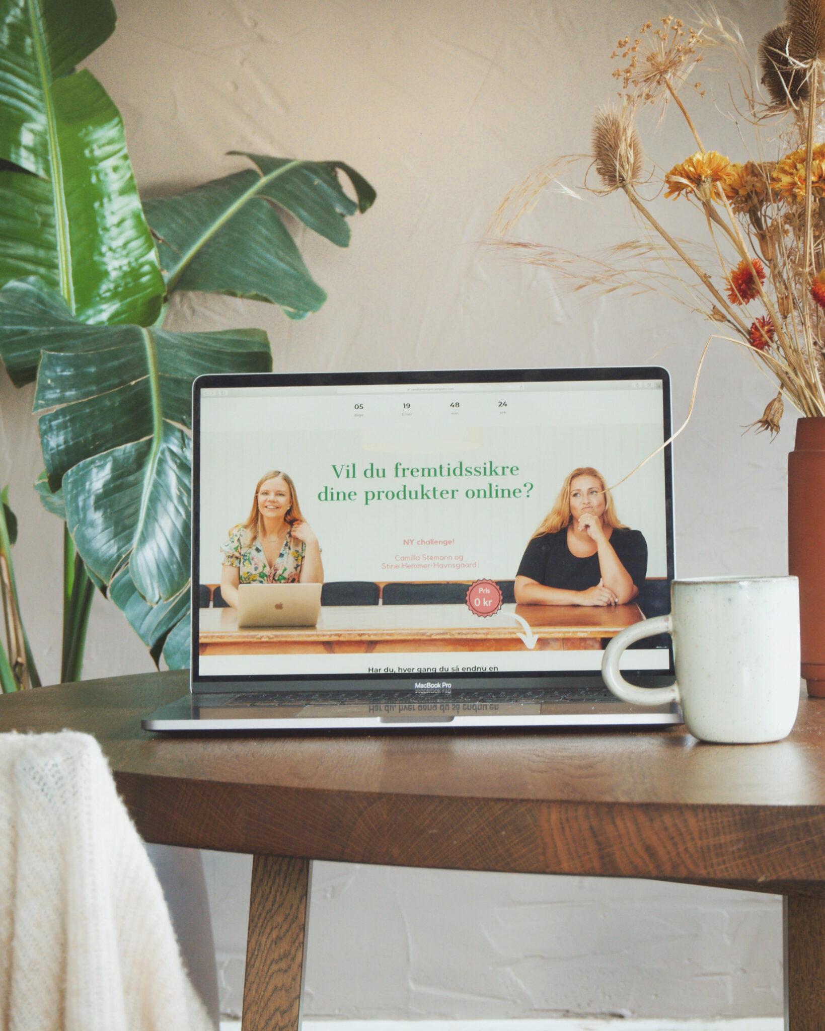 sælg din produkter online